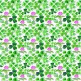 与水彩三叶草叶子和花的无缝的样式设计的 库存照片