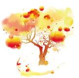 与水彩作用的传染媒介树 免版税库存图片