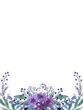 与水彩小的紫罗兰色花和草本的框架 免版税库存照片