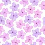 与水彩手拉的嫩紫色和桃红色春天的一个无缝的花卉样式开花 皇族释放例证