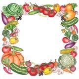 与水彩明亮的五颜六色的菜和蘑菇的框架 免版税图库摄影