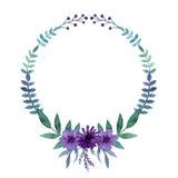 与水彩明亮的紫罗兰色花、莓果和叶子的简单的花圈 库存图片