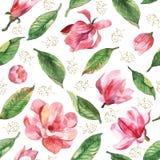 与水彩木兰的无缝的花卉样式 库存照片