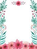 与水彩柔和的桃红色花和绿色叶子的卡片 图库摄影