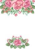 与水彩桃红色玫瑰、莓果和绿色叶子的卡片 库存照片