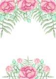 与水彩桃红色玫瑰和蕨的卡片 免版税库存图片