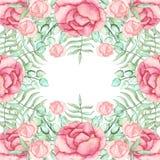 与水彩桃红色玫瑰和蕨的框架 图库摄影