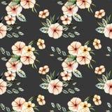 与水彩桃红色的无缝的花卉样式开花花束 向量例证