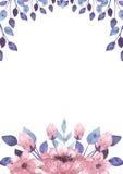 与水彩桃红色花和蓝色叶子的框架 免版税库存照片
