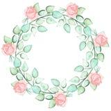与水彩浅粉红色的罗斯芽的花圈 免版税图库摄影