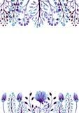与水彩浅紫色的芽和莓果的卡片 库存图片