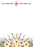 与水彩淡黄色花和箭头的卡片 免版税图库摄影