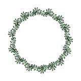 与水彩深绿叶子的草本花圈 库存照片