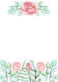 与水彩玫瑰、芽和地方的卡片文本的 免版税库存照片