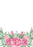 与水彩的卡片发芽,玫瑰和叶子 免版税库存图片