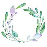 与水彩的花卉元素油漆 库存例证