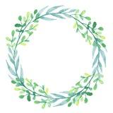 与水彩的花圈绿色和蓝色叶子 免版税图库摄影