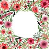 与水彩红色和桃红色花和绿色叶子的小插图 免版税库存图片