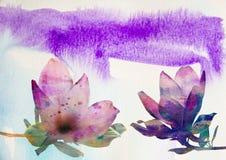 与水彩纹理的桃红色木兰花 图库摄影