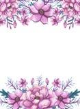 与水彩花和深绿叶子的框架 免版税库存照片
