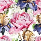 与水彩花的无缝的样式 虹膜 库存图片
