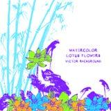 与水彩莲花传染媒介的明信片 免版税库存图片
