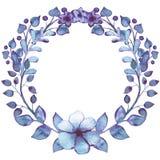 与水彩蓝色叶子、紫罗兰色花和莓果的花圈 免版税库存图片