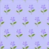与水彩蓝色的无缝的花卉样式 免版税库存照片