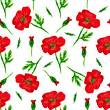 与水彩被绘的红色鸦片花,设计元素的典雅的无缝的样式 婚姻的邀请的花卉样式,招呼 免版税库存图片