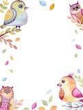 与水彩滑稽的鸟和五颜六色的叶子的卡片 库存图片