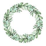 与水彩绿色叶子的圆的草本花圈 库存图片