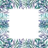 与水彩绿色和蓝色叶子、Berriea和草本的卡片 库存照片
