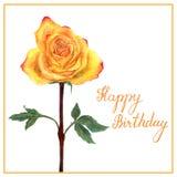与水彩黄色玫瑰的明信片 免版税库存图片
