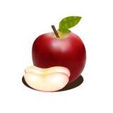 与阴影的有吸引力的红色苹果 免版税库存图片