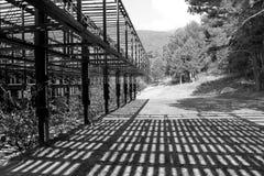 与阴影的木建筑学结构在一个森林里在塞尔塞迪利亚,西班牙 库存照片