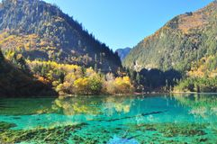与轻微的反射的谷在一个清楚的蓝色湖 免版税图库摄影