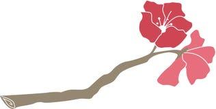 与绽放的桃红色杜娟花分支 免版税库存图片
