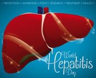与更新的和被保护的肝脏的海报在世界肝炎天,传染媒介例证 皇族释放例证