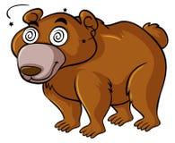 与头昏眼花的眼睛的北美灰熊 皇族释放例证