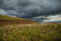 与黑暗的云彩的大草原风景 免版税库存图片