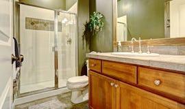 与黑暗的橄榄色的墙壁的卫生间内部 免版税库存照片