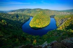 与黑暗的水和绿色森林马掌弯,伏尔塔瓦河河,捷克共和国,欧洲的河峡谷 美好的风景与劈裂 图库摄影