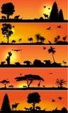 与黄木樨草动物和植物群的传染媒介横幅 免版税库存图片