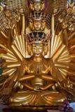与1000条胳膊的菩萨金黄菩萨雕象 库存图片