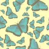 与绿松石蝴蝶的夏天无缝的样式 免版税库存图片