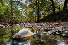 与结构树和河的秋天横向 免版税库存图片