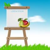 与画架和果子的夏天背景 库存照片