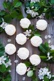 与黄油奶油和春天白花的杯形蛋糕 库存图片