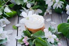 与黄油奶油和春天白花的杯形蛋糕 图库摄影