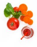 与黏浆状物质的混杂的蔬菜汁 免版税库存图片